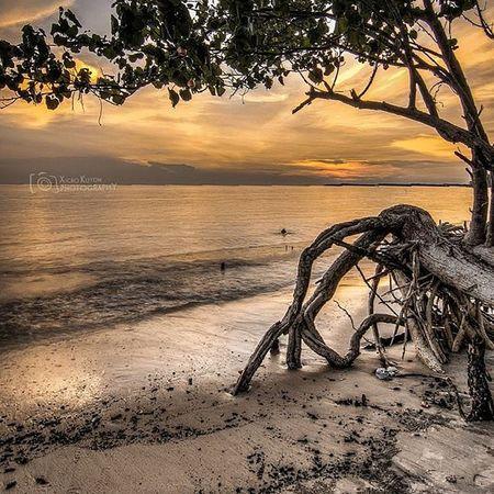 Damai yang dicari.. Bestestaward Sunset Beauty Beach mangrove pantai pasir awan sand pasir petang sayang cinta love landscape kuning yellow bestmoment bestnatureshot matahari sun nature fresh selfie portklang hdr