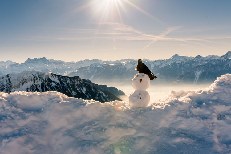 Snow covered mountain range against sky