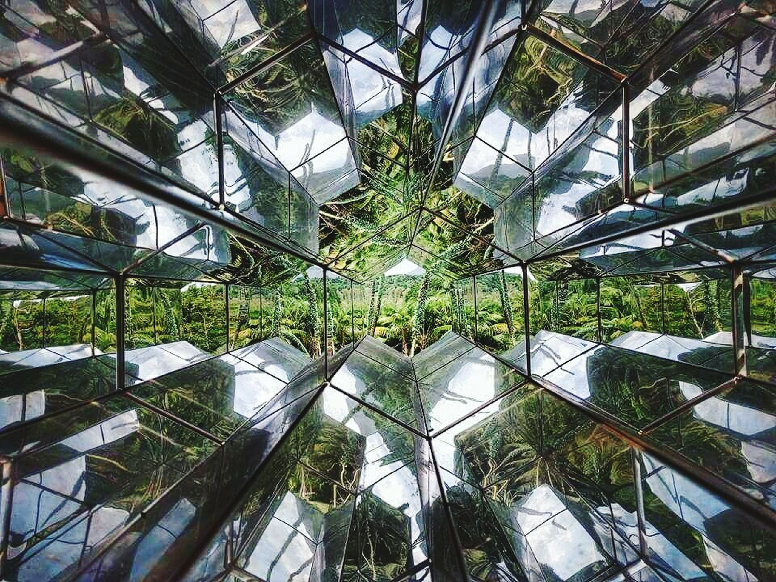 growth, green color, greenhouse, indoors, plant, architecture, modern, tree, built structure, no people, plant nursery, roof, leaf, nature, complexity, day, futuristic, sky