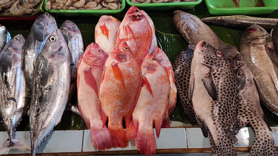 Fresh fish at the stall on traditional market in depok jawa barat indonesia