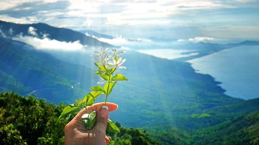 My Year My View Hai Van Pass Danang, Vietnam Hai Van Quan Beauty In Nature Sky Flower Nature My Life Is The Trip Danang Day Adult Myself Vietnam Trip Vietnam My Hand  Beautiful Girl Danangcity Mountain