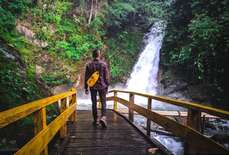 Rear view of man walking on footbridge by waterfall in forest