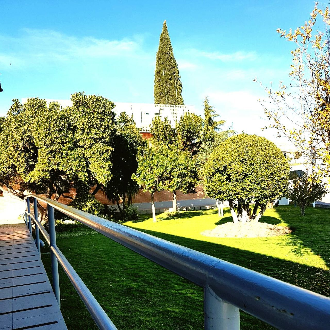 tree, day, architecture, park - man made space, green color, built structure, outdoors, growth, grass, no people, building exterior, nature, sky