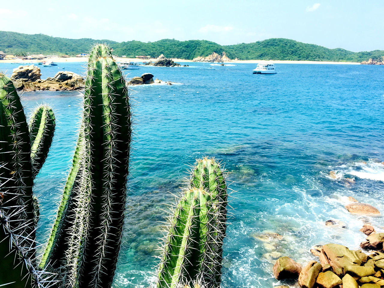 water, beauty in nature, sea, scenics - nature, nature, tranquility, plant, tranquil scene, land, day, rock, beach, sky, no people, rock - object, solid, mountain, outdoors, growth, turquoise colored, bay