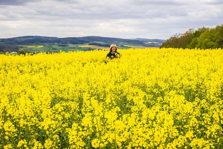 Eifel Germany Raps Flower