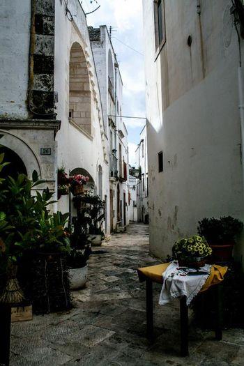 Alberobello Alberobello - Puglia Alberobello City Alberobelloexperience Alberobellophotocontest Trulli Trulli Houses Trullilovers