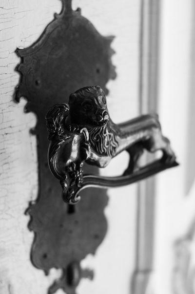 Iron door lock with lion Animal Themes Building Exterior Built Structure Close-up Door Holding Iron Lion Lock Outdoors Selective Focus Working Animal дверь замок ручка