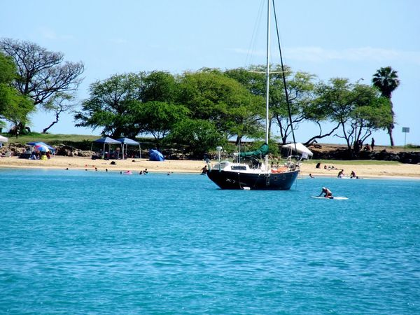 Nautical Vessel Transportation Water Mode Of Transport Sky Sea Mast Outdoors Tree Day Nature Sailboat No People Yacht Yachting Postcard Picture Landscape_Collection Beach Life Relaxation Tranquil Scene Travel Destinations Leisure Activity Beach Photography Hawaii Nei Sand & Sea