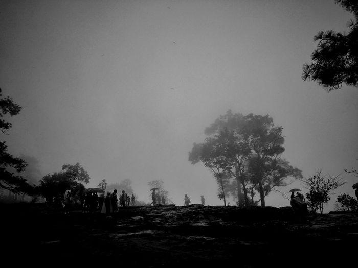 ⛰🌬🌂🌀 Smog Pixelated Air Pollution Smoke Stack Artificial Intelligence Mother Board Cooling Tower Bromo-tengger-semeru National Park Camera Film