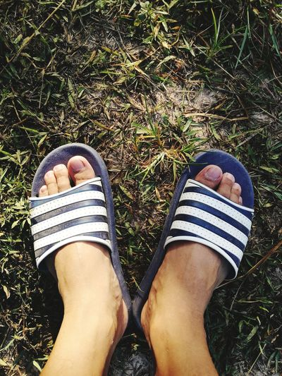 foot Low