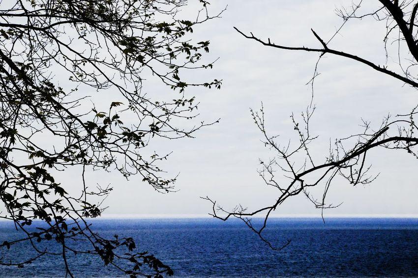Taking Photos Zonguldak Bysinaneksi Hello World EyeEm Best Shots EyeEm