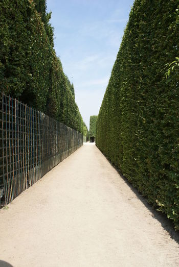 Cloud Day Diminishing Perspective Footpath Formal Garden Green Green Color Growth Garden Architecture Narrow Nature No People Non-urban Scene Outdoors Pathway Plant Sky Solitude Garden Photography The Way Forward Tranquil Scene Tranquility Tree Vanishing Point Walkway My Best Travel Photo