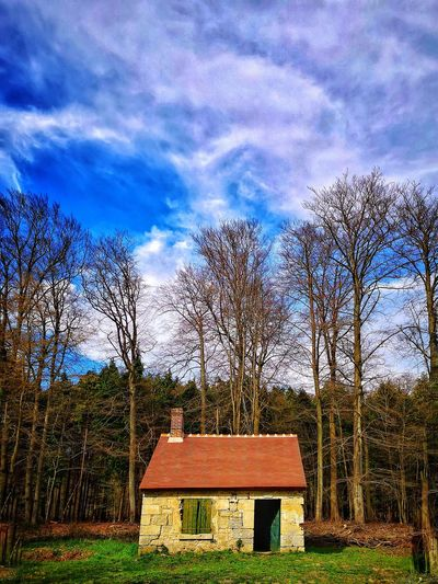 Ancien relais de chasse abandonné Forest Forest House Abandonned House Strange Tree Sky Grass Cloud - Sky Calm Residential Structure