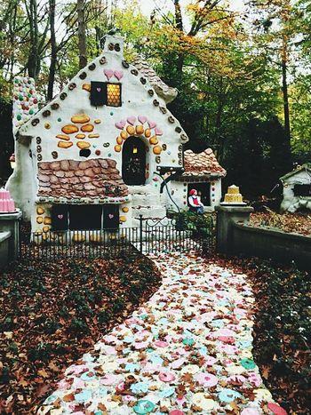Fairytales & Dreams Fairy Garden Fairy World Fairyland Grimm