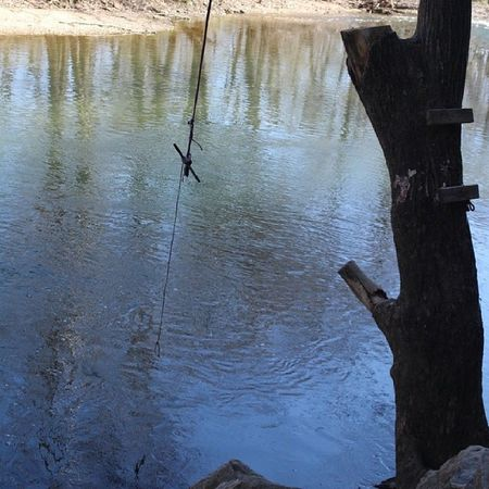 Swimming Hole Water Swing Country Fun Clear Water Fishing Hole Rope Swing Over Water Summer Fun