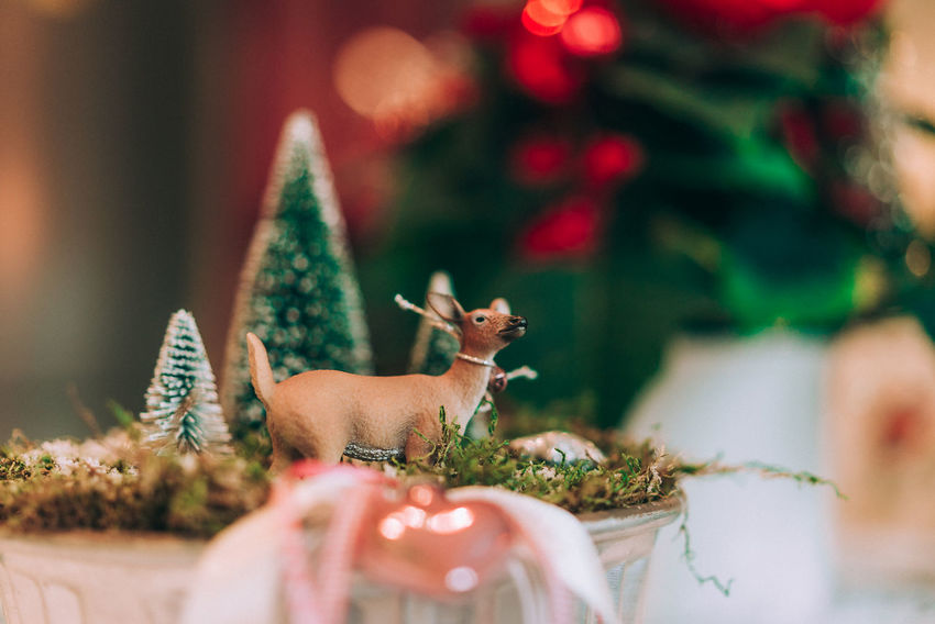 Celebration Celebration Event Christmas Christmas Christmas Decoration Christmas Ornament Christmas Presents  Christmas Tree Close-up Crafted Day Figurine  Handmade Handmade Christmas Indoors  Made With Love No People Plant Presents Reindeer Sculpture Statue Tradition Tree Xmas
