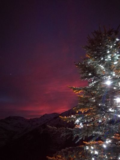 Tree Sky Night Christmas Star - Space Outdoors Mountain Illuminated Nature Christmas Tree Christmas Lights Christmas Time Sunset Taking Photos Beauty In Nature Capture The Moment No People Mountain View Winter Landscape Winter Eye4photography  EyeEm Nature Lover Nofilternoedit Naturally Beautiful  Snow Sports