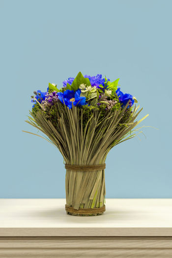 Close-up of purple flower vase on table against blue wall