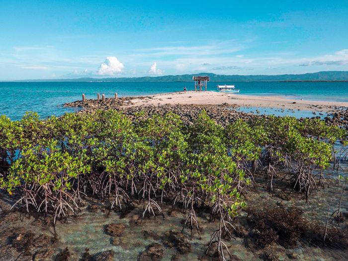 Beach Beauty In Nature Blue Boat Environment Eyeem Philippines Horizon Over Water Island Mangrove Nature Ocean Scenics Sea Sky Water