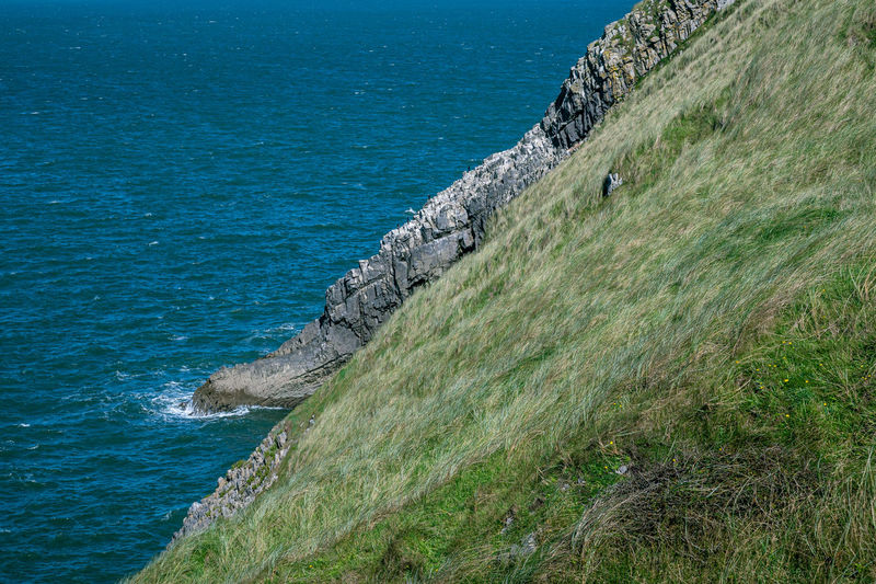 Geology and the landscape of the gower peninsula, wales