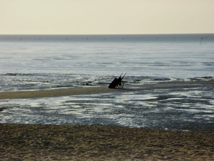Mud Flat Mudflats Hand Cart Hand Carts Nature Quiet Moments Outdoors No People Lonelyness Flowers, Nature And Beauty Water Sea Northsea