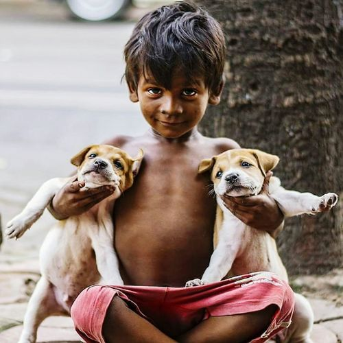 Portrait of cute boy with dogs sitting outdoors