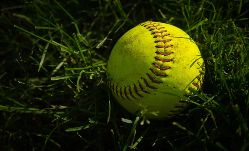 High angle view of baseball on grassy field