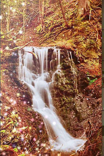 Wasserfall Harz EyeEm Eyem Gallery Eyemphotography Taking Photos Hello World EyeEm Nature Lover Landscape Nature Waterfalls Natural Waterfall Water Stone Water_collection Naturephotography #cubefotografie Cubefotografie