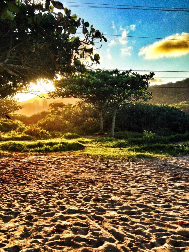 Summer sunset (14/03/2014 - iPhone 4s) © José Maciel - facebook.com/ZeMacielPhoto
