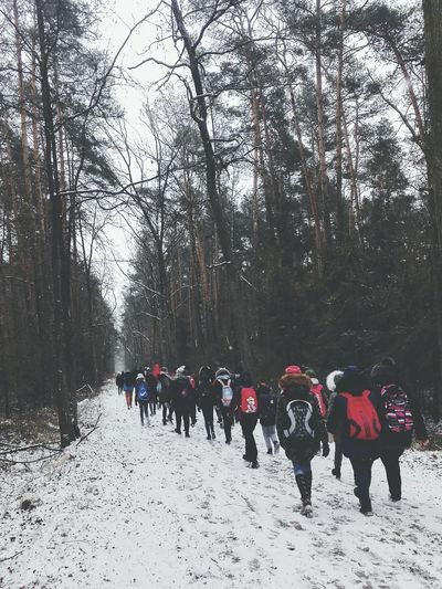 Rajd 🤗💞 Tree Sky Rajd Travelling Winter Men Icicle Snowcapped Cold Cold Temperature Frozen Season