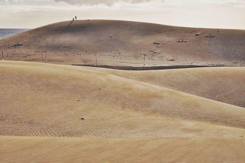 sandy dunes of
