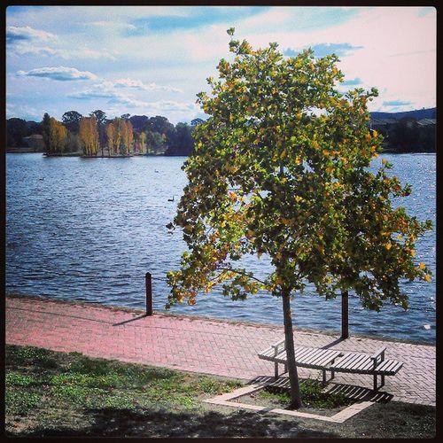 A serene view of Yerrabi Pond in Gungahlin Igerscanberra