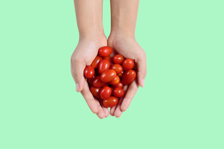 Cherry tomatoes holding by hand on green background Bright Cherry Close Up Cooking Diet Eating Food Fresh Freshness Fruit Giving Hand Harvest Health Healthy Holding Ingredient Juicy Macro Nature Nutrition Organic Red Ripe Sweet Tomato Top View Vegetable Vegeterian Vitamin White Studio Shot Wellbeing Healthy Eating Colored Background Copy Space Green Background Cherry Tomato Isolated