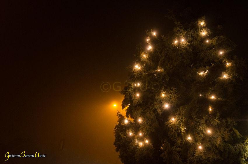 Navidad Christmas Tree Christmas Christmas Lights Outdoors Navidad2016 Toledo Spain Luces Navideñas Árbol Navideño Niebla Fog