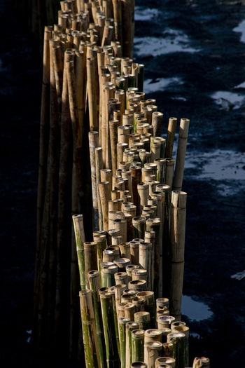 Bamboo sticks in the shade and sea. Bamboo - Material Blocl Close-up Day Nature Outdoors Protection Sea, Sunny Sunny Day Tranquility Water Winter Wood - Material