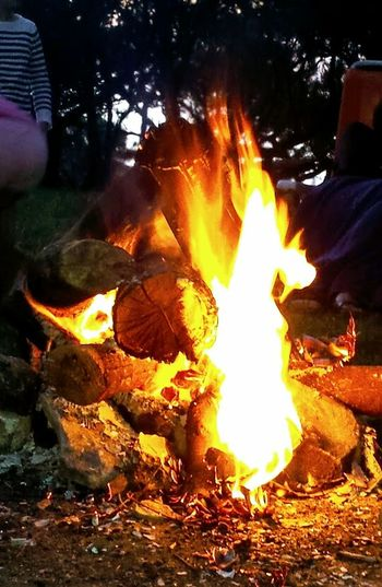 Flame Nature EyeEmNewHere