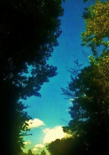 klundert, sky, Summer,
