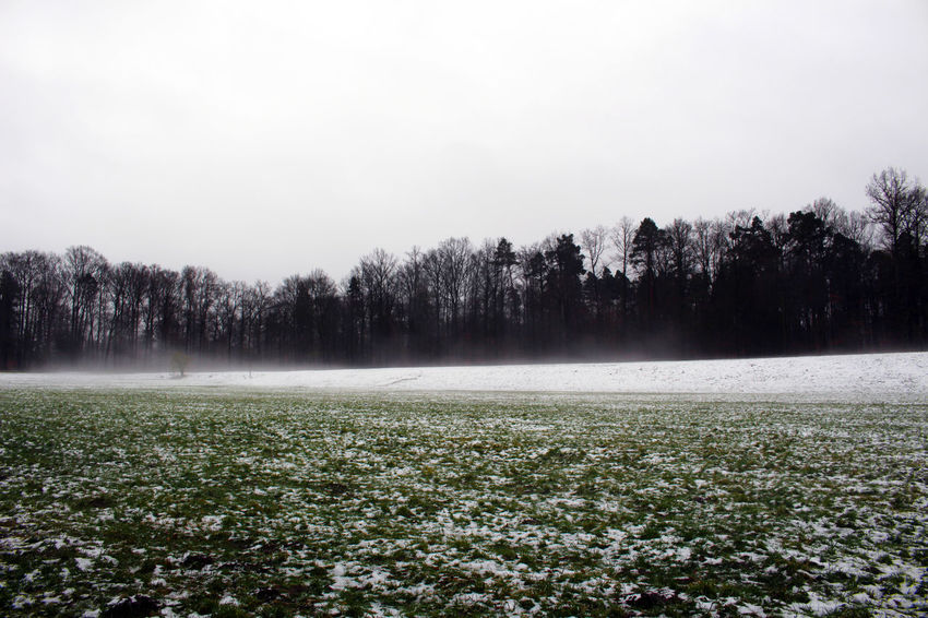 Stuttgart Winter Agriculture Beauty In Nature Cold Temperature Day Field Fog Freshness Germany Growth Landscape Nature No People Outdoors Rural Scene Scenics Silence Sky Solitude Tranquil Scene Tranquility Tree Winter