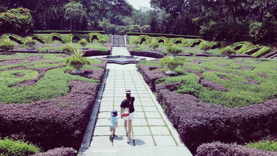 High Angle View Real People Outdoors Walking Leisure Activity Nature Lifestyles People Eye4photography  Mother And Son Garden Photography Garden_styles Botanical Gardens Malaysia Photography