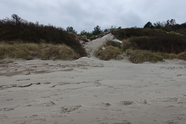Baltic Sea In Winter Dunes Beach Beauty In Nature Day Nature No People Outdoors Sand Sand Dune Sky