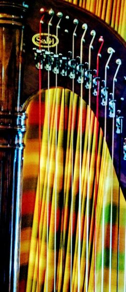Multi Colored No People Variation Choice Indoors  Close-up Day Harp Stringed Instrument Close Up Irwin Collection EyeEm Gallery Arts Culture And Entertainment Musical Instrument Music