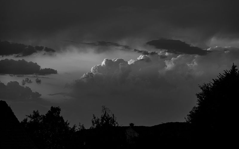 Dramatic Sky Beauty In Nature Black And White Cloud - Sky Day Growth Hell Und Dunkel Low Angle View Nature No People Non-urban Scene Outdoors Plant Power In Nature Scenics - Nature Silhouette Sky Storm Storm Cloud Thunderstorm Tranquil Scene Tranquility Tree