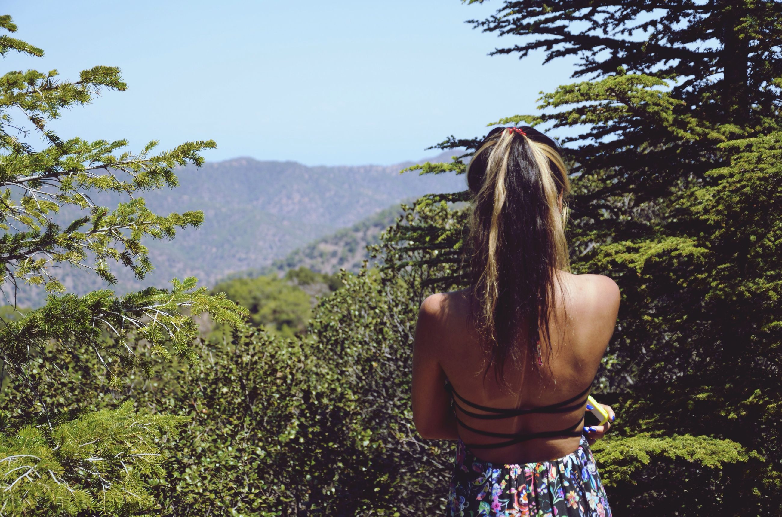 tree, rear view, waist up, standing, tranquil scene, mountain, long hair, landscape, clear sky, scenics, person, tranquility, casual clothing, solitude, idyllic, getting away from it all, lush foliage, nature, beauty in nature, one young woman only, sunny, countryside, weekend activities, remote, growth, day, escapism