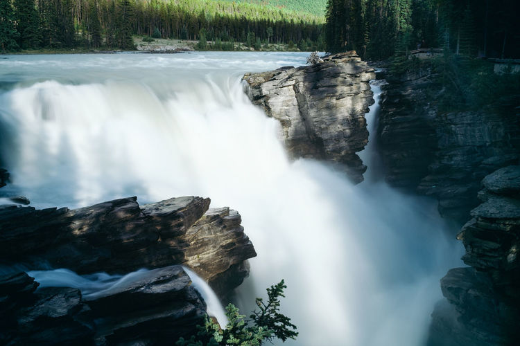 Beauty In Nature Blurred Motion Cliff Day Flowing Water Forest Long Exposure Motion Nature No People Outdoors Power In Nature Rapid Rock - Object Scenics Sky Tree Water Waterfall Athabasca Falls Athabasca Athabasca River Athabasca Glacier Athabascafalls AthabascaGlacier