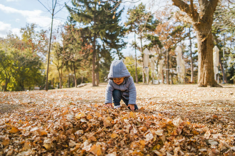 Cute boy playing on leaves covered land in park during autumn