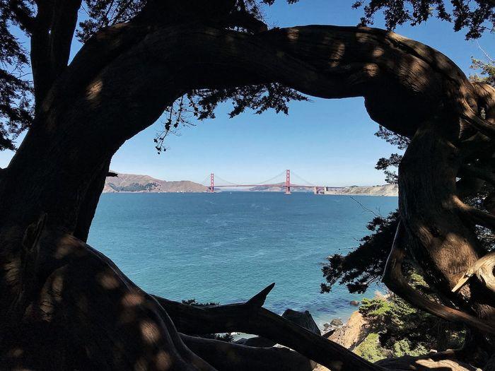 View of suspension bridge from sea