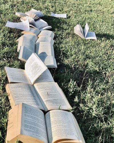 High angle view of books on field