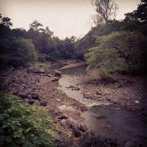 Nature Tungareshar Vasai Picnic Thane Mumbai Click