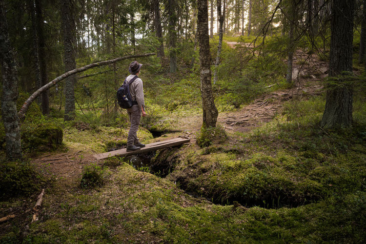 Man standing on footpath amidst trees in forest