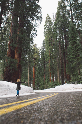 Curly Hair Day Forest Full Length Girl Growth Mountain Nature One Person Real People Rear View Road Road Roadtrip Sequoia Sequoia National Park Snow Snowing The Way Forward Transportation Tree Tree Trees Walking Winter Lost In The Landscape Connected By Travel